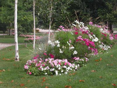 L 39 arboretum du petit jard jardin de paradis cartridge for Jardin anglais chalons en champagne